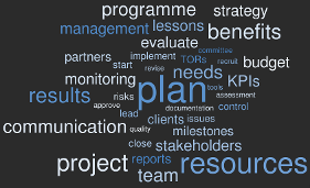 Plans and management word cloud OWS